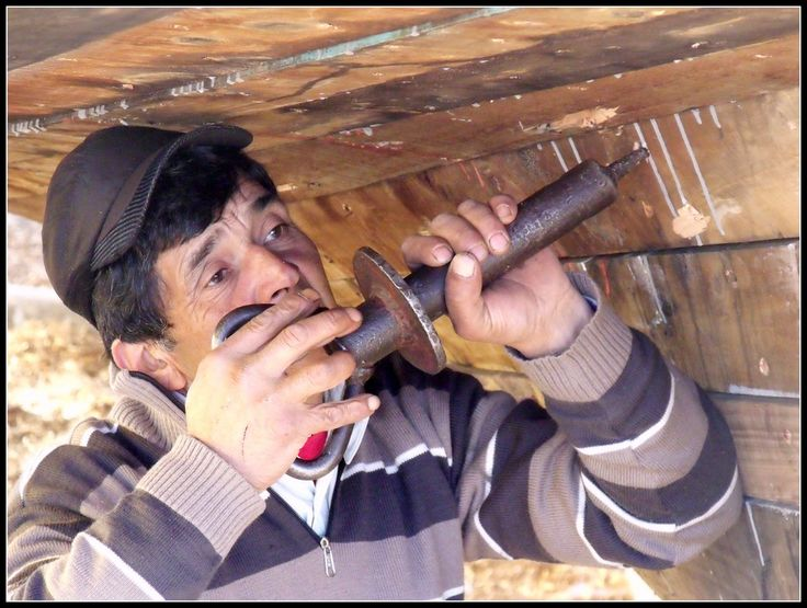 """CARPINTERO DE RIBERA,  Chile.     Milenario oficio que se mantiene vigente tras generaciones. En plena faena de """"engolillado"""" o afianzamiento de las cabezas de los clavos de cobre que fijan los maderos a las cuadernas de la embarcaciòn."""
