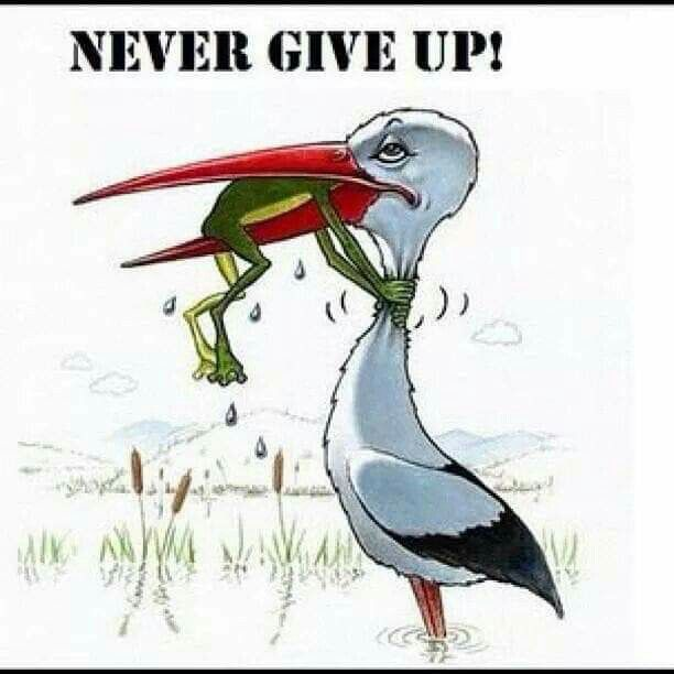 Never Give Up Never Give Up Inspirational Quotes Giving Up