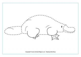 Platypus Tracing Page