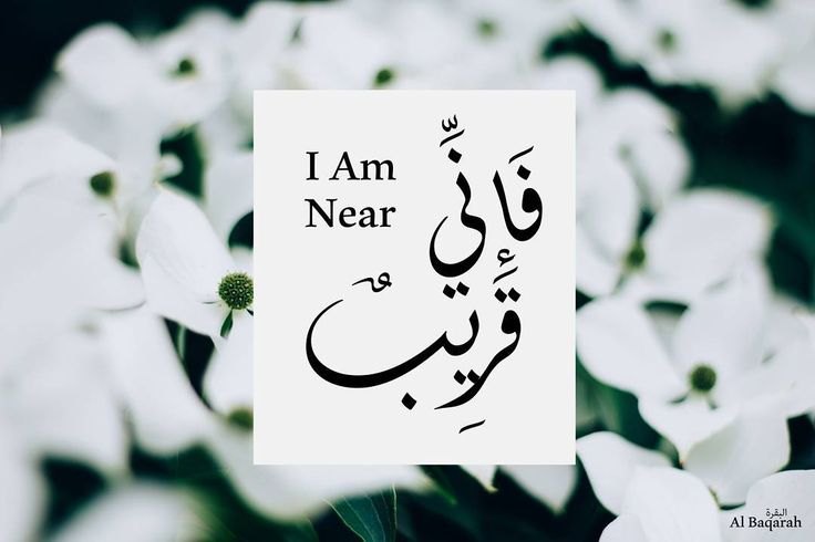 """""""And when My Servants ask you [O Muhammad] concerning Me - indeed I am near. I respond to the invocation of the supplicant when he calls upon Me. So let them respond to Me [by obedience] and believe in Me that they may be [rightly] guided."""" Holy Quran verse (2:186). """"و إذا سألك عبادى عنى فإنى قريب أجيب دعوة الداع إذا دعان فليستجيبوا لى وليؤمنوا بى لعلهم يرشدون"""" صدق الله العظيم. Islamic picture #095 If you like this wallpaper visit our website to download it in HQ and mobile resolution…"""
