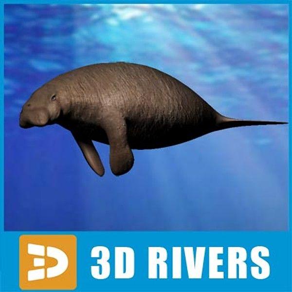 3Ds Max Steller Sea Cow Animals - 3D Model