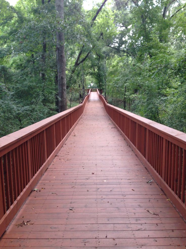 Nature trail located in Marksville Louisiana 110