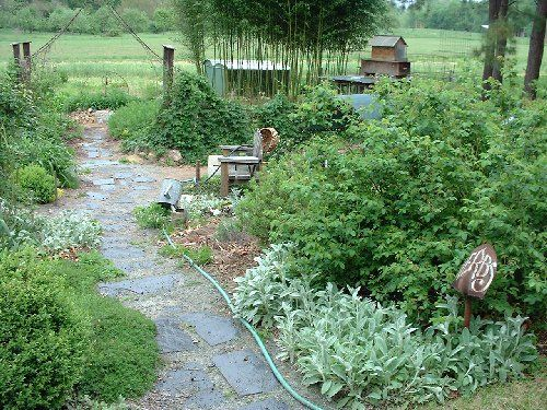 128 best herb garden images on pinterest landscaping for Herb garden design