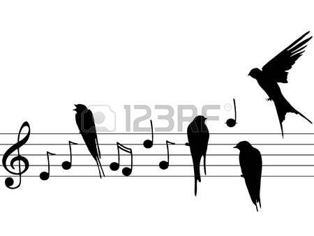 zenei jegyzeteket madarak
