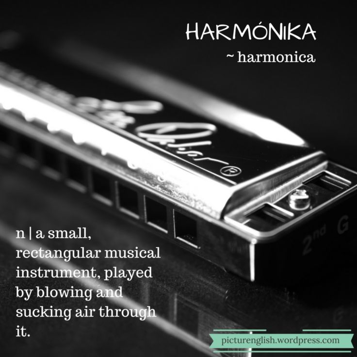 Harmonica / Harmónika