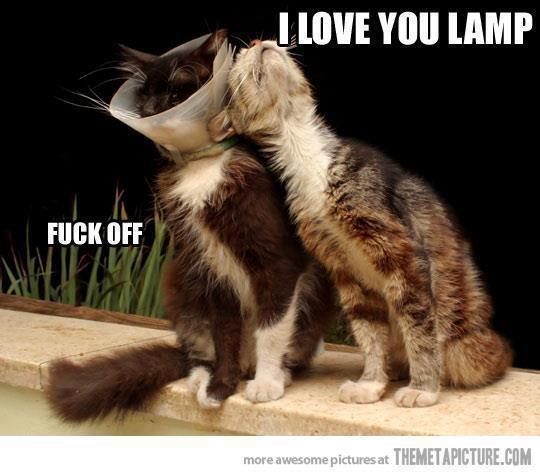 I love you lamp