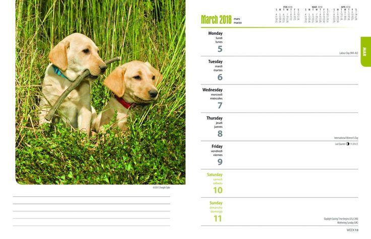 9 best 2018 adorable puppy calendars images on pinterest wall calendars calendar 2018 and dog