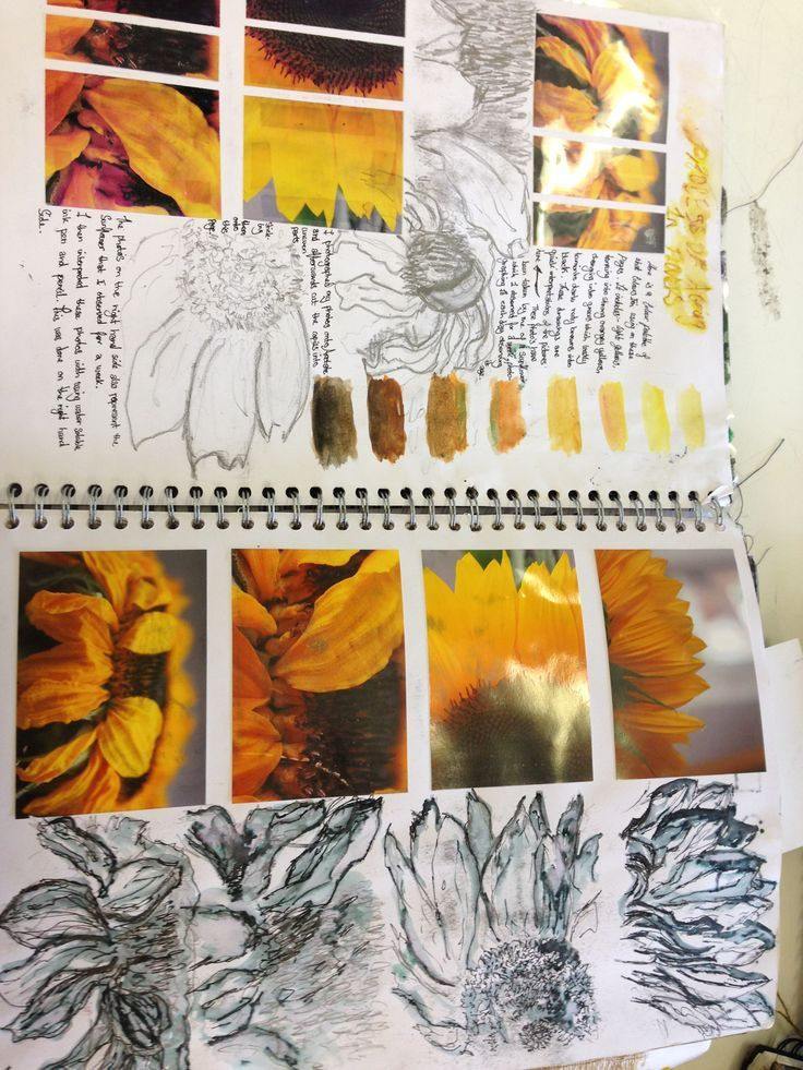 Sketchbook. Textures. Offer many pics of textures from magazines. Kids pick several. Glue in sketch book. Draw.