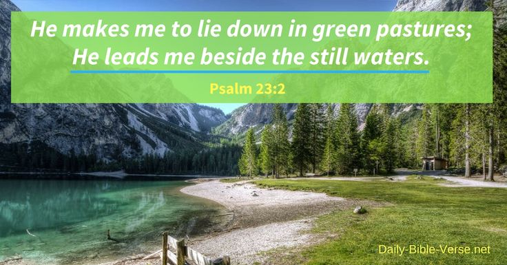 Psalm 23:2 is a Bible verse from one of the most popular Psalms in all the Bible that describes the places the Lord, our Shepherd, takes us. Study this Bible verse and Commentary to slow down and recognize that what you're searching for is in something you already have.