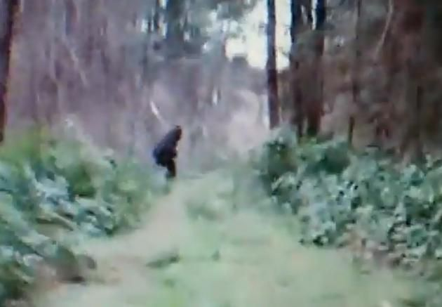 The Bigfoot Video That Proves Bigfoot Exists