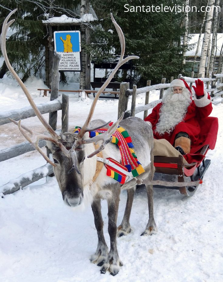 Santa Claus, his reindeer and the sign of Arctic Circle line in Finnish Lapland