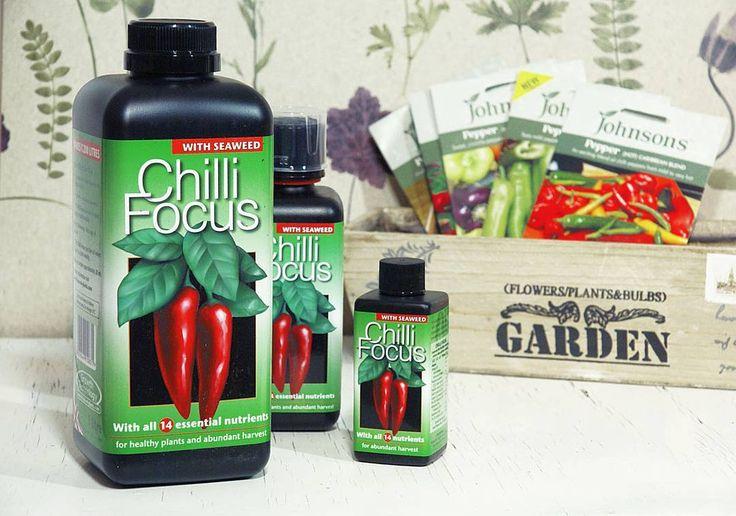 Chili och paprika har specifika behov när det gäller näringssammansättningen. Även om dessa växter klarar sig relativt bra med generell näring kan man få ett riktigt bra resultat med vår Chilli Focus näring som är den exakta sammansättningen de behöver.