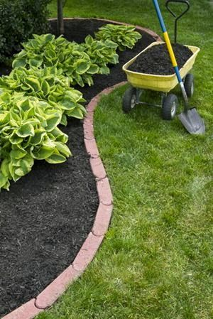 Landscaping on a Budget: A Better Lawn for Less!