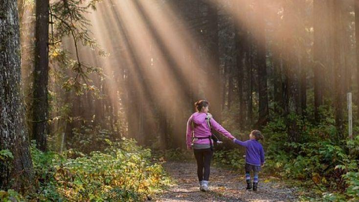 7 Reasons to Take Your Kids Hiking #family #hiking #travel