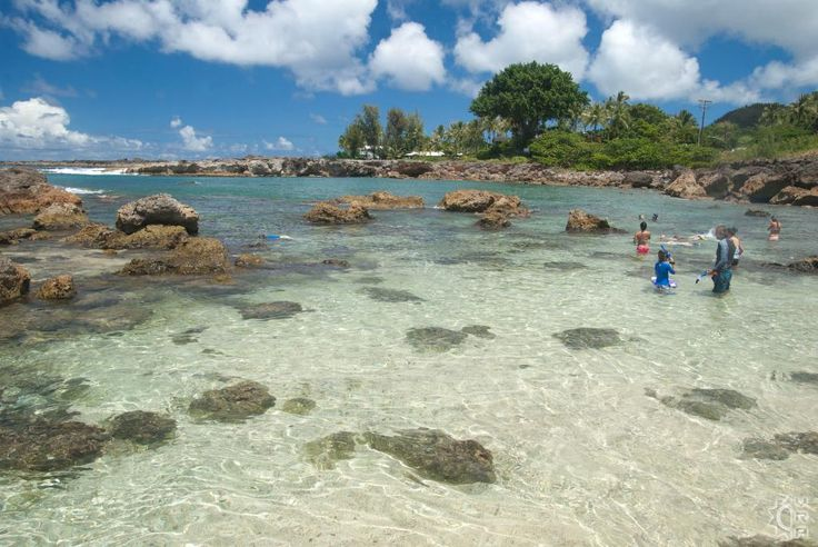 Shark's Cove - Pupukea Tide Pools in Haleiwa, Oahu, Hawaii | Hawaiian Beach Rentals