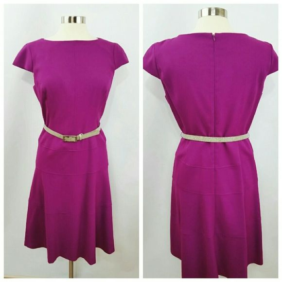 Anne Klein Fuschia Dress Fuschia AK dress w/ belt. Great for the office! Worn twice and kept in excellent condition. Size 12 Anne Klein Dresses Midi