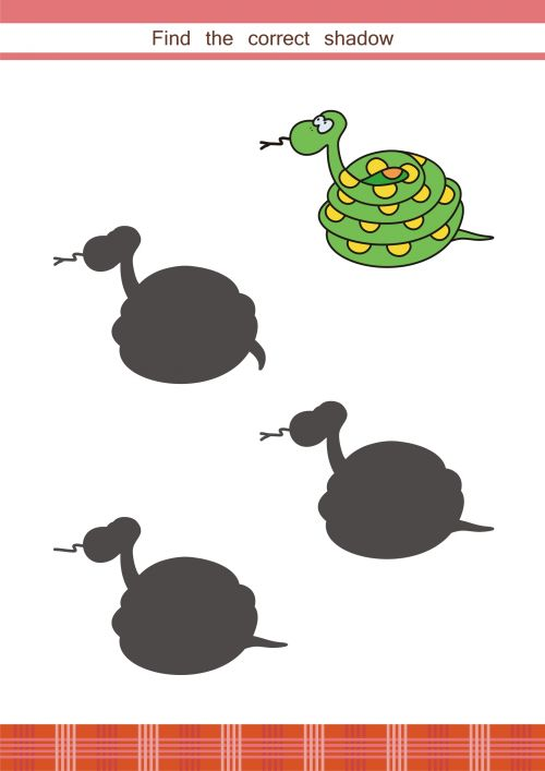 This fun, free printable activity sheet is perfect for young learners. Print for your student, and watch them use their problem solving skills to match the snake with its shadow. When they have found the answer, see if they can tell you what is different about the other shadows!    #braingames, #logic, #games, #printable