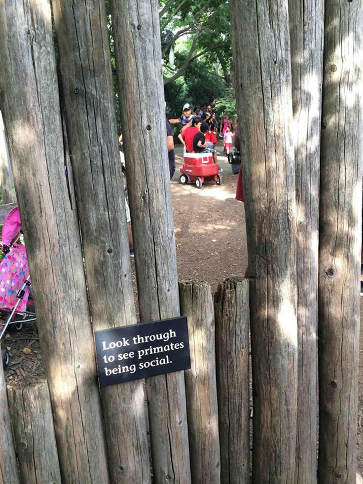 20 Funny Zoo Signs Which Probably Have Some Incredible Stories Behind Them