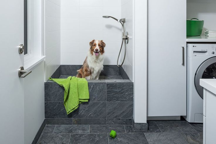 5 Benefits Of Having A Dog Wash Station In Your Home // They're the perfect height for your pup to jump into and you don't have to bend over too much to wash them.
