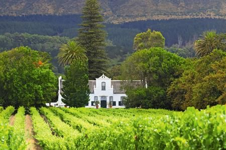 South Africa: 5 of the best Western Cape options for groups | C&IT