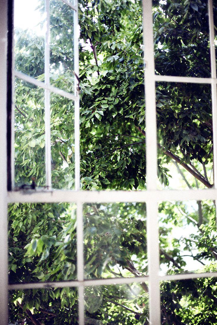 Beautiful windows at office.
