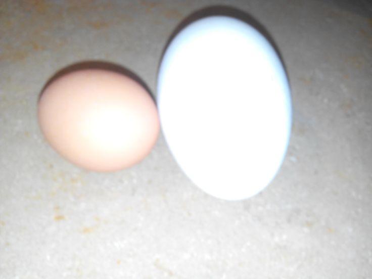 Huevo de ganso   http://www.crochetenlasnubes.com/?cat=9