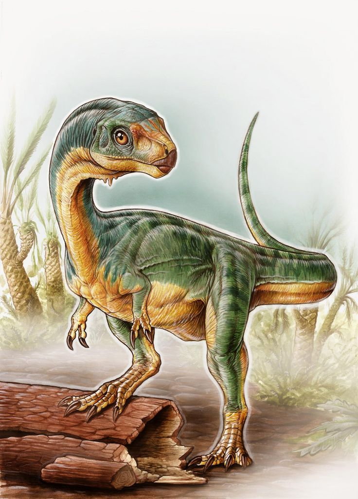 Bizarre Newly Discovered 'Platypus' Dinosaur Baffles Scientists | IFLScience