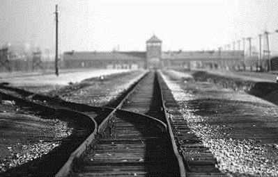 Las historias de Doncel: Auschwitz: imágenes de ayer y de hoy  ¡Dudo que éstos malditos mexicanos no sean la reencarnación de aquellos malditos de los 40's!.