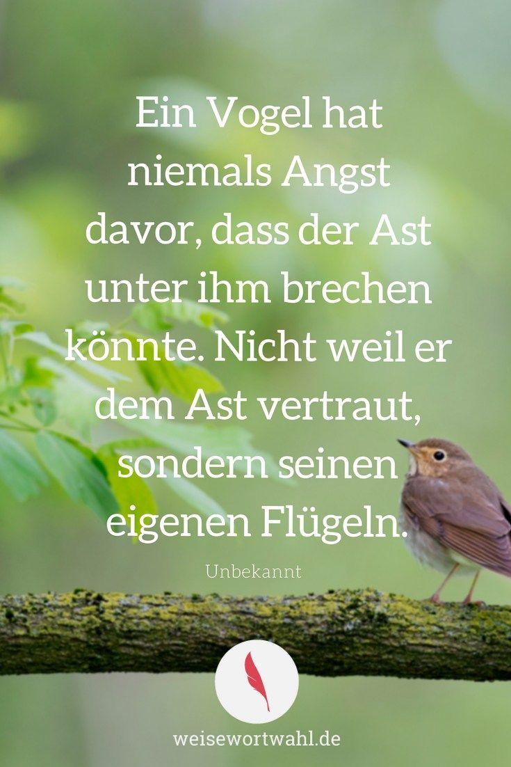 Ein Vogel hat niemals Angst davor, dass der Ast unter ihm brechen könnte. Nicht weil er dem Ast vertraut, sondern seinen eigenen Flügeln. unbekannt