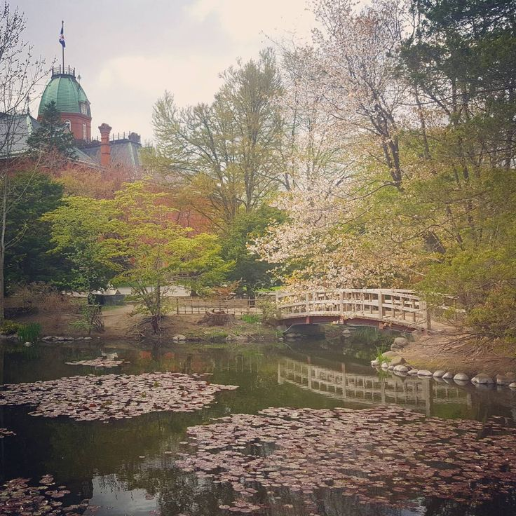 Exploring the gardens of the former Hokkaidō Government Office in Sapporo. #Japan #sakura #Travel #sapporo http://tipsrazzi.com/ipost/1509413461217316387/?code=BTyg4u3DQ4j