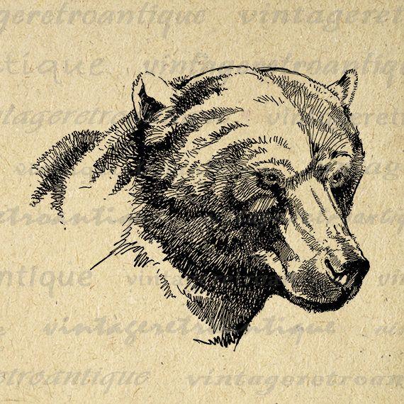 Digital Image Brown Bear Graphic Bear Printable Download