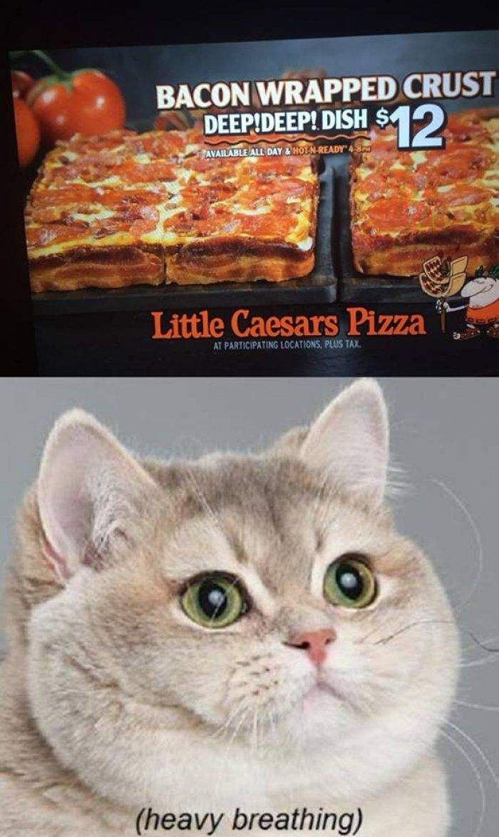 little caesars bacon wrapped deep dish pizza (HEAVY BREATHING) yes I have actually tried it...