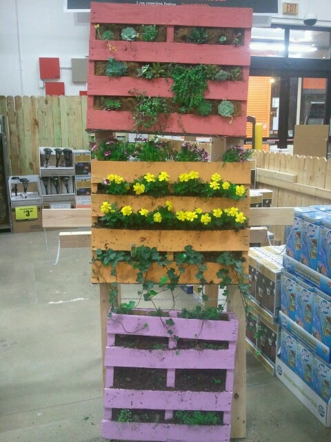 Verticle gardening workshop @ The Home Depot on south sheilds March 30th 2013! Come see how we made this beautiful hanging palet garden!