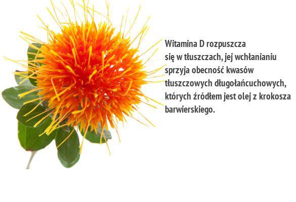 Witamina d3 dla dorosłych i dla dzieci – w czym jest witamina d - vitrumd3.pl