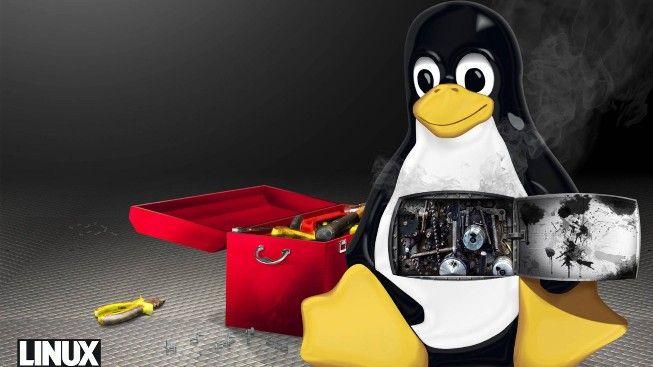 Linux #wallpaper #linux #penguen