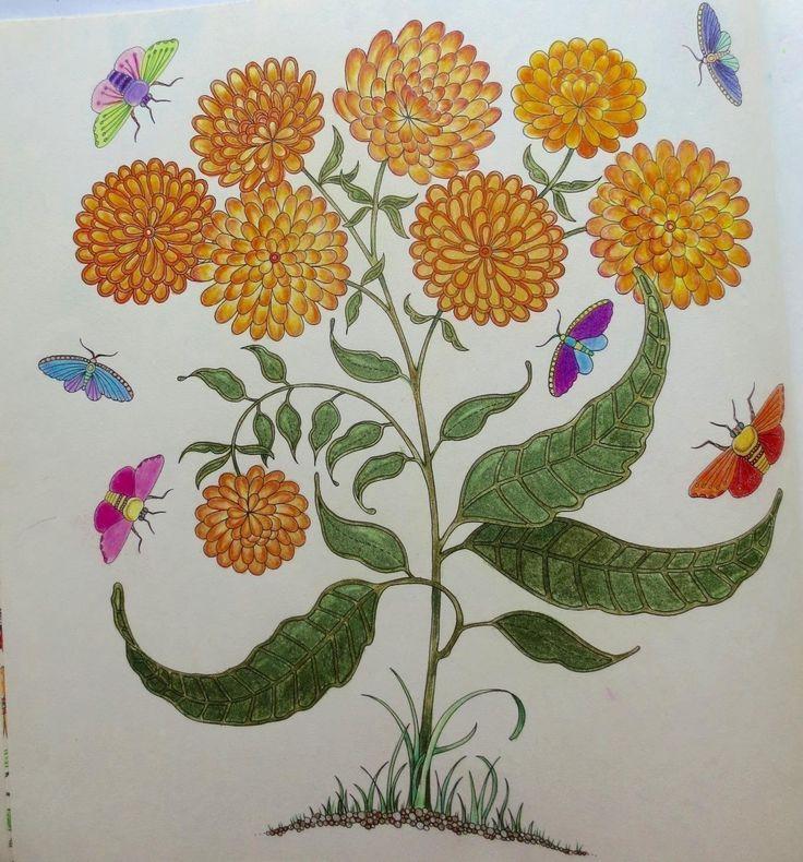 17 Best Images About Secret Garden Coloring Book On Pinterest