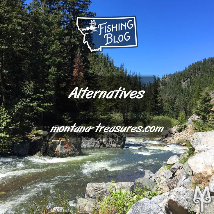 Bozeman's Hyalite Creek is one of southwest Montana's best fly fishing alternatives when the local rivers have been inundated with snow melt. Read more about this stunningly beautiful fly fishing alternative in Bozeman's back yard. Read more! :)