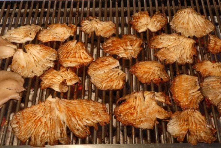 Μανιτάρια Πλευρώτους ψητά στα κάρβουνα - gourmed.gr