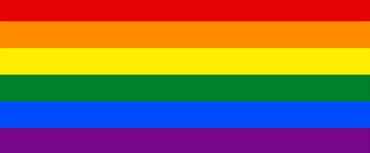 http://www.estrategiadigital.pt/celebrate-pride/ - O dia 27 de junho de 2015 marcou um ponto de viragem na história mundial: nos Estados Unidos da América, o Supremo Tribunal reconhece o casamento homossexual como um direito inalienável e declarou-o legal nos 14 estados-
