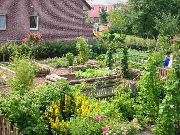 School gardens can be big.  Gartenbau