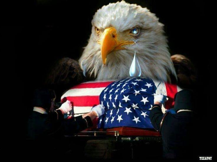 In Loving Memory of The Fallen Heroes....