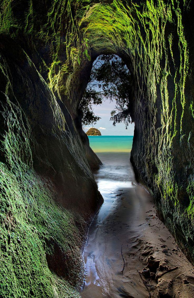 "travelgurus: "" Abel Tasman National Park in New Zealand by Darren Patterson Mi… – Veronika Matthes"