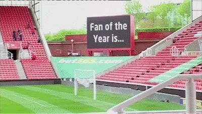 Hairy_Potter_fan_of_the_year_2013_Stoke_City