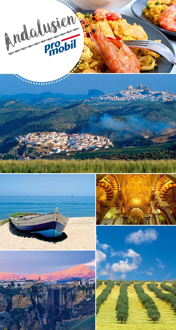 16 best Wohnmobil-Touren in Spanien images on Pinterest | Spain ...