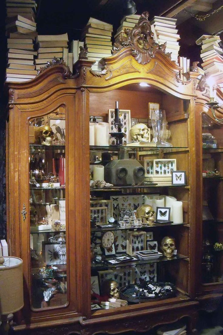 Brilliant Cabinet of Curiosities at Rogers Garden CA. 365 #RogersGardensHalloween