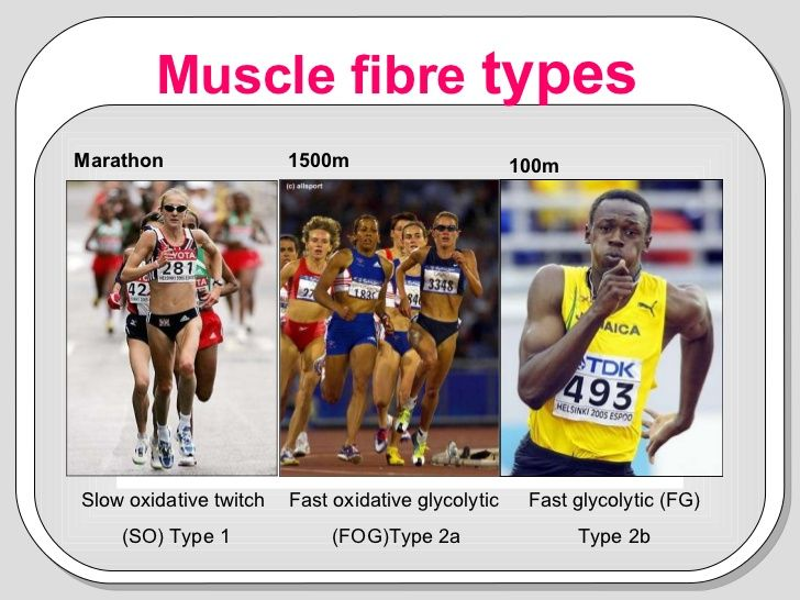 Anaerobic Capacity - Fibre Type, fast twitch fibres can generate anaerobic power faster then slow twitch fibres because they have greater anaerobic stores as fuel.