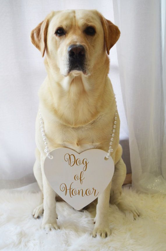 Dog Of Honor Engraved Wedding Sign With Pearl by KimeeKouture - this will definitely be happening at my wedding