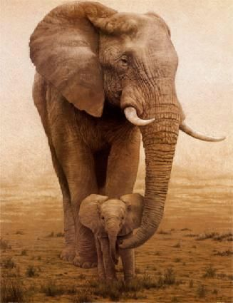 baby: Africans Elephants, Babies, Mothers, Animal Baby, Baby Elephants, Art, Baby Animal, Baby Girls, Beautiful Creatures