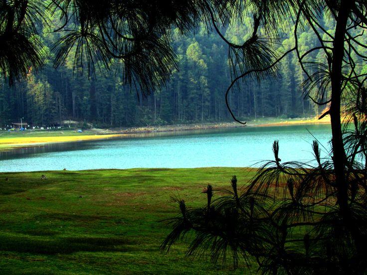 Parque Natural los Azufres