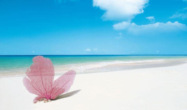 Best Beaches in the world 2014, Playa Paraiso Beach, Cayo Largo, Cuba -